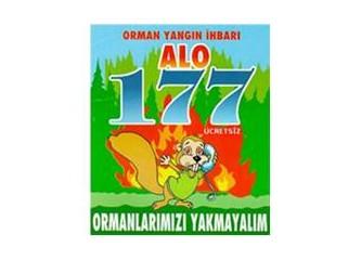 Ormanlarımızı yakıyorlar!