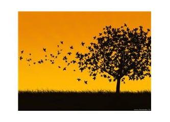 Yapraklar eksilse de ağaçlar ölmüyor biz eksikliklerimize rağmen hayatı yaşıyoruz.