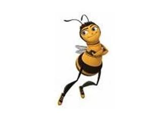 Bal arısının hikayesi.