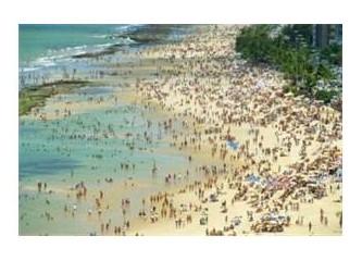 Köpekbalığının en çok saldırdığı sahiller