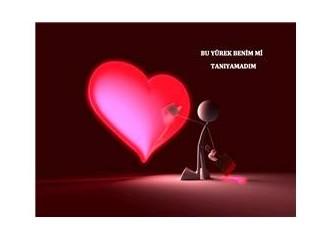 Bu yürek benim mi tanıyamadım