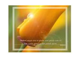 """İhlas süresi, Tebbet süresi, nüzul sebepleri ve günümüz """"Ebu Leheb""""leri..."""