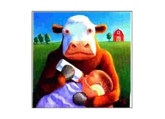 Alerjiye çözüm; Evinizde bir inek besleyin