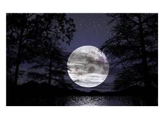 Ay ışığı kokusu