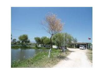 Bergama yollarında çölde bir vaha: Boncuk Göleti…