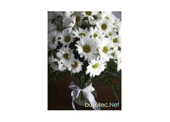 Kocaman çiçek...