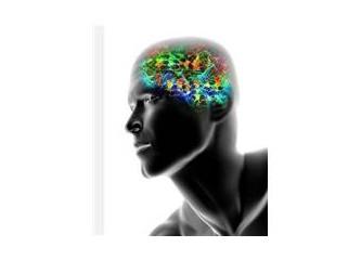 Algılarımız moleküllerin içinde nasıl saklanır?