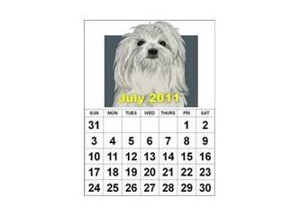 2011 Temmuz Ayı 5 Cuma, 5 Cumartesi, 5 Pazar