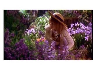 İçimizdeki gizli bahçe (2)