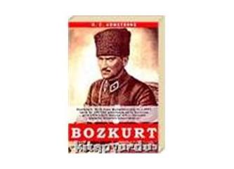 """""""Türk Düşmanı, Bozkurt kitabı"""", gerçekte """"Türk dostu"""" İngilizlerin PR çalışması mıdır. (Son)"""