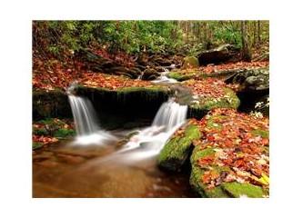 Ağalık düzeni ve Kürt sorunu…