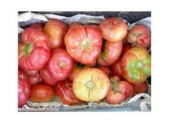 Yaz geçmeden pembe domateslerle tanışın