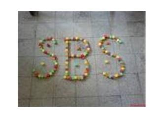 """""""S""""ana ne """"b""""enim """"s""""eviyemden"""