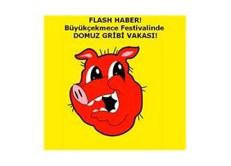''DOMUZ GRİBİ'' Uluslararası Büyükçekmece Festivalin de domuzluk etti.