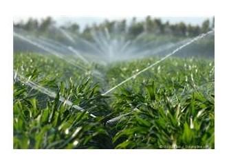 Tarımda su kullanımı