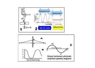 Dom (5)- kuantların temel özellikleri -3
