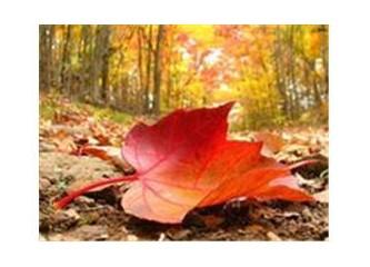 İnsan, yaprak ve mevsim