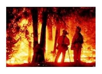 Orman yangınları başladı