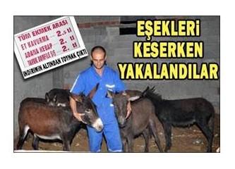 Eşek ve at eti zararlı mı?