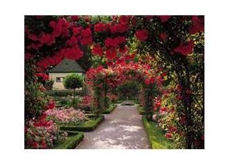 İçimizdeki Gizli Bahçe (3)