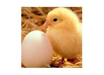 Yumurtalı eylemler ilköğretime de sıçrayabilir!