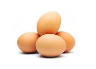 Protestoya evet, yumurtaya hayır!