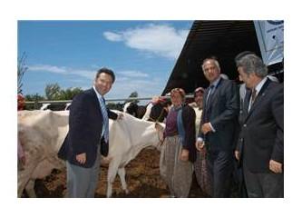Mersin'de Akdeniz Rotary Kulübü'nden örnek proje...