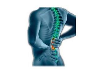 Bel ağrısı, bel fıtığı ve hakkında önemli bilgiler.