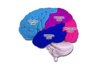 Öğrenme gücünü azaltan sebepler