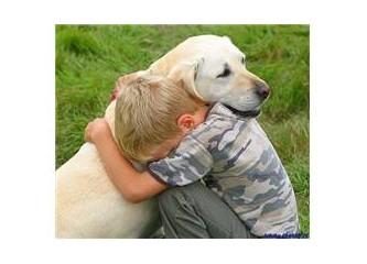 Hayvan Dostlarımız 2 : Bir Köpek