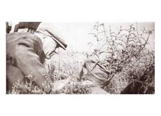 Var mı Atatürk'ten çevreci devlet adamı ?
