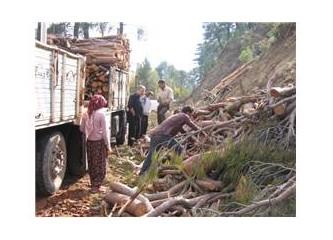 Orman köylüsü ve orman işçisi