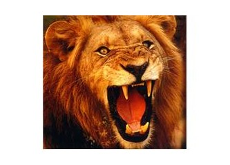 Aslanın ağzı