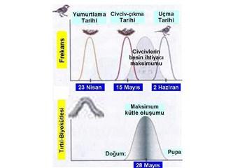 Dom eki-7b- Atalarımızın doğa anlayışı-2