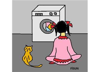 Çiçek ve Sarı Kedi...