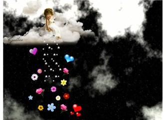 Bir yıldıza bin çiçek