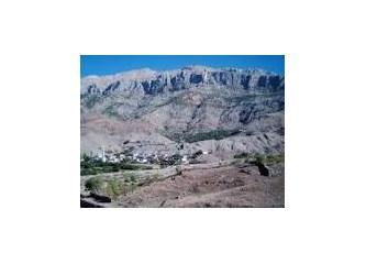 Dağın ve Doğanın Vahşeti