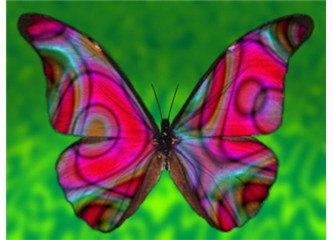 Amaç insan I – Kelebek etkisi