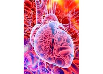 Sizce kalbin her hücresi elektrik üretmeyi nasıl bilir?