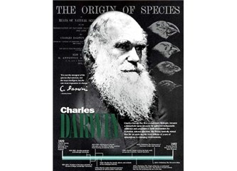 Evrim teorisini çökerten deliller 1 – Evrim neden geçerli değil?