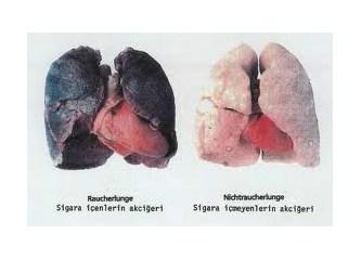 Dikkat! Sigara bağımlısının hoşuna gitmez! Okumak yürek ister...
