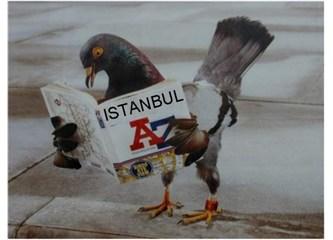 İstanbul - dayım