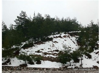Kar yağar ince ince; Bir başka güzeldir dağlar Denizlide