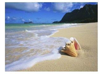 """Эскизы всех картинок в презентации  """"На море """".  Там, где море соприкасае."""