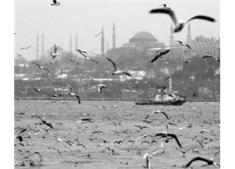 Şehrim