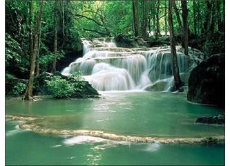 Kültür ve doğal çevrenin turizmdeki önemi