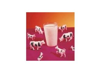 Çiğ, pastorize ve kutu süt seçimlerimize analizci bir bakış
