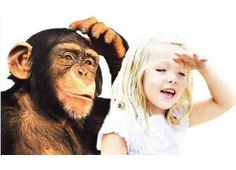 Evrimi çökerten deliller- 20 yaş dişi neden evrime delil gösterilemez?