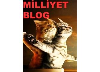 Blog'ların Tadı Kaçtı. Nerde Eski Kavgalar !