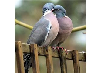 Bahar Aşk ve umut kokar …